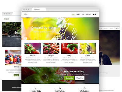 A selection of easy–to–customize website templates